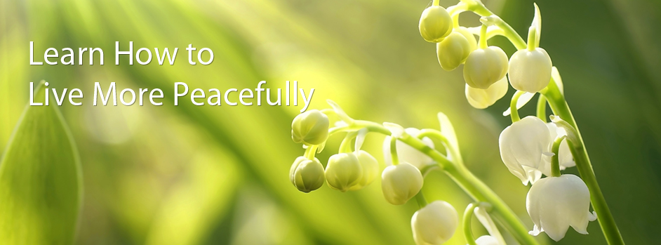 banner6-learn-to-live-more-peacefully
